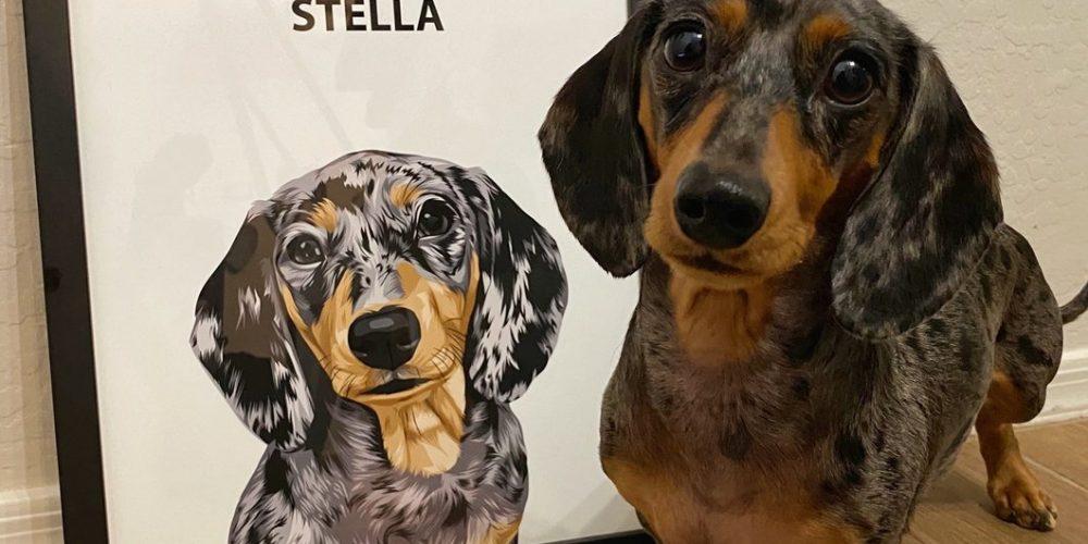 Brand New About Custom Pet Portrait